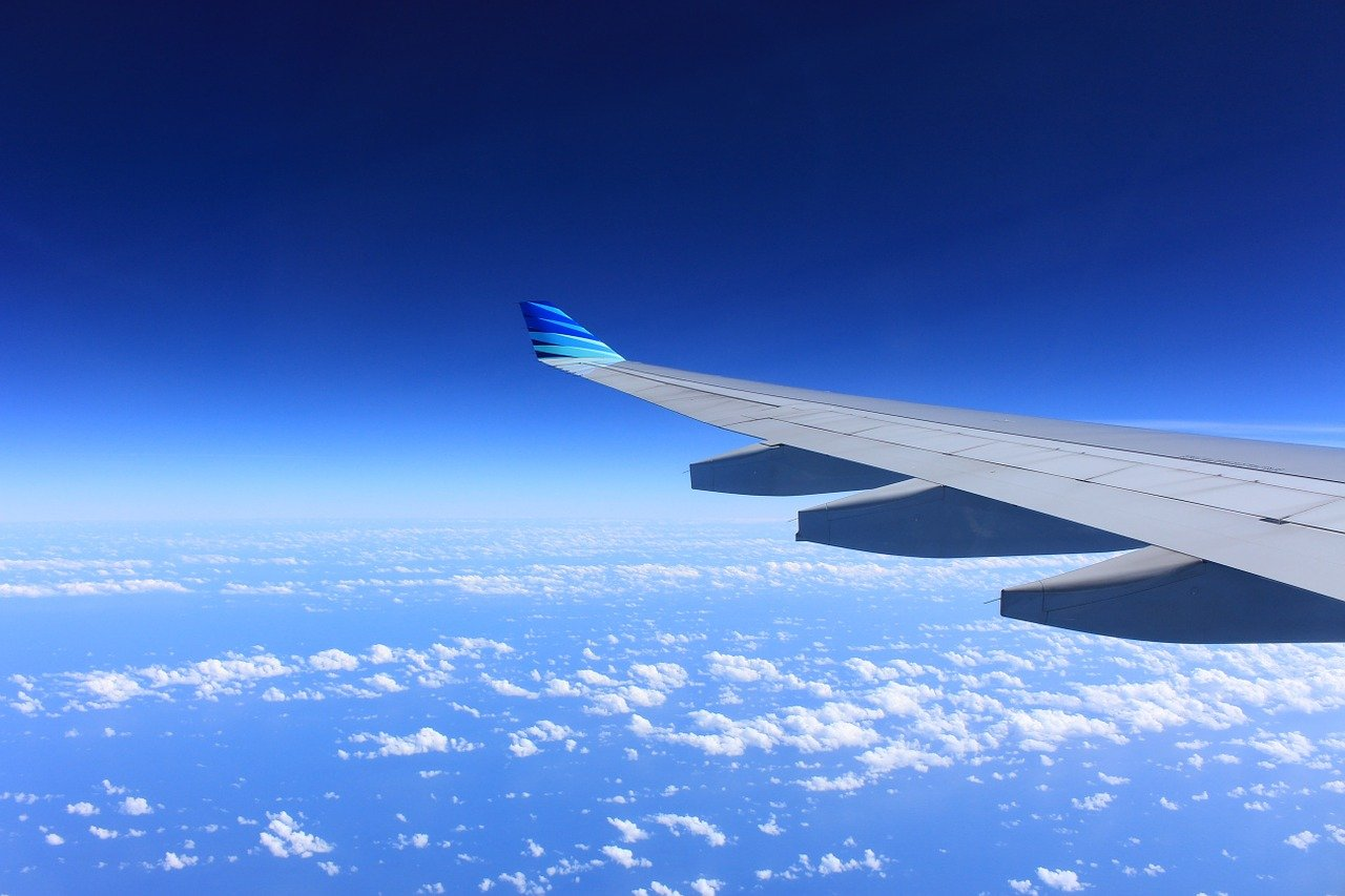 wing, plane, flying